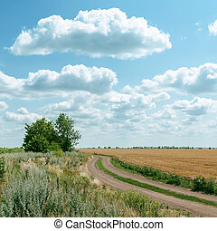 rural road in field and clouds over it