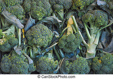 Broccoli vegetable - Broccoli cabbage vegetables in crate on...