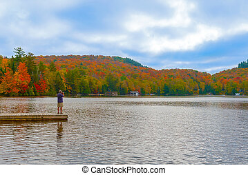 Panoramic view at Algonquin Park in Ontario, Canada -...