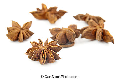 anise - Anise close up isolated on white background