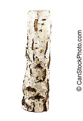 birch log isolated on the white background