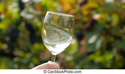 close up of a glass of white wine - hand shaking a glass...