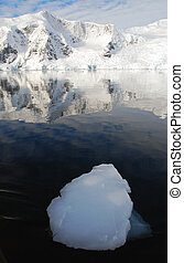 Antarctica with large ice floe - Large ice floe in...
