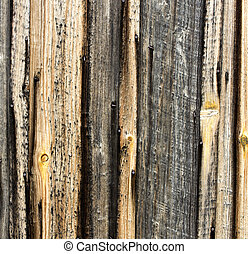 barnboard background - vintage barnboards for background use