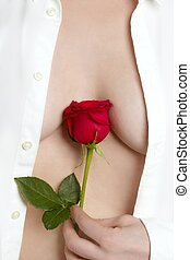 Beautiful woman body holding red rose - Beautiful woman body...
