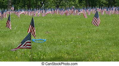 Memorial Day Flags - A Cemetary decorated with hundreds of...