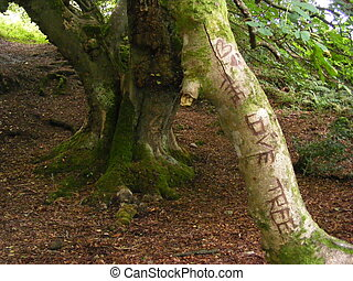 The Love Tree - Carving on an old tree in a beauiful woods
