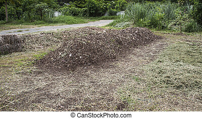 manure pile - pile of natural manure fertilizer made from...