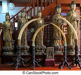 Gangaramaya Temple Colombo - statues and elephant tusks of...