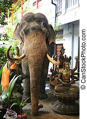 Elephant Gangaramaya Temple Colombo - a stuffed elephant of...