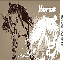 Hand drawn background with horse - Vector illustration with...