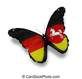 Lower Saxony flag butterfly, isolated on white