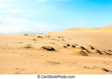 Mui Ne sand dune - Wave on desert and blue sky Mui Ne sand...