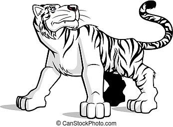 White tiger - Illustration of cartoon white tiger on white...
