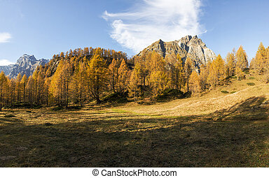 Devero Alp, colors of autumn season - Autumn landscape in...