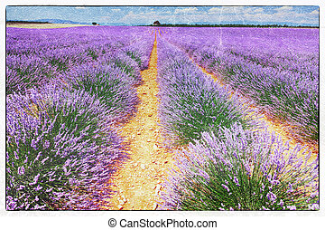 fresco style of the lavender field - vintage fresco style of...