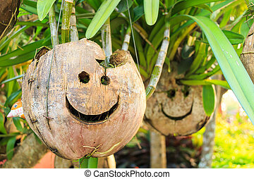 coconut with smile face