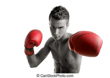 Young boxer man isolated on studio