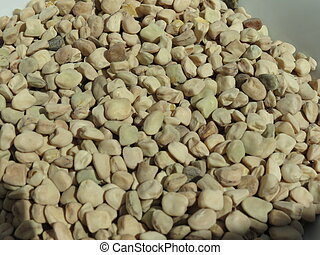 Grass pea - Lathyrus sativus - dried seed useful a s a...