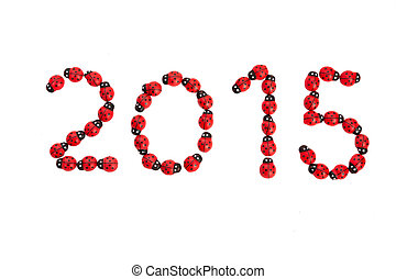 lucky 2015 wish from ladybugs - numbers for the new year...