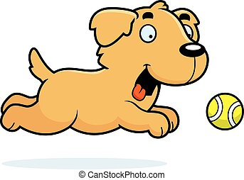 Cartoon Golden Retriever Chasing Ball - A cartoon...