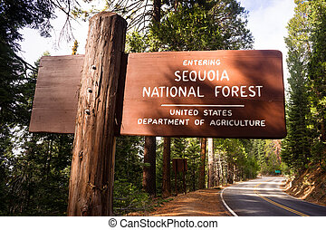 Entering Sequoia National Forest Road Sign California Parks...