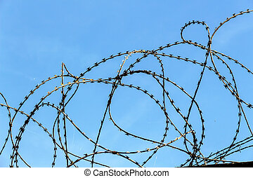 barbed wire - a plot of land is covered with barbed wire
