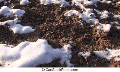 field covered by first fresh snow