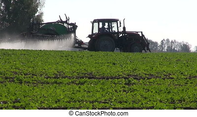 tractor spray rapeseed crop field - farm tractor spray...