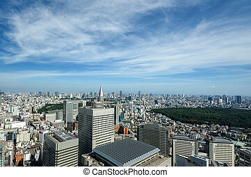 Shinjuku subcenter. View from the Tokyo Metropolitan...