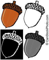 Acorn - Editable vector illustrations in variations. Acorn