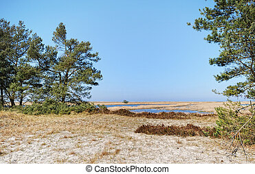 Darsser Ort at Baltic sea beach on Darss peninsula