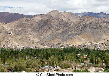 Leh, Ladakh, India - Fort and Namgyal or red gompa is main...
