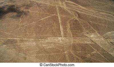 Nazca line, Pelican - Lines and Geoglyphs of Nazca, Peru