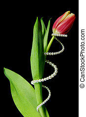 Twisted - Pearl twisted around a tulip