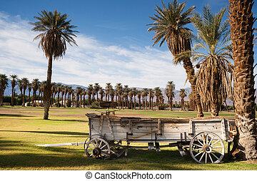 Old Buckboard Covered Wagon Palm Tree Oasis Death Valley -...