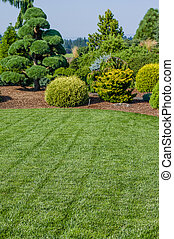 Lawn and landscaped garden - Green lawn with landscaped...