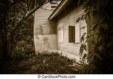 Old abandoned House in forest