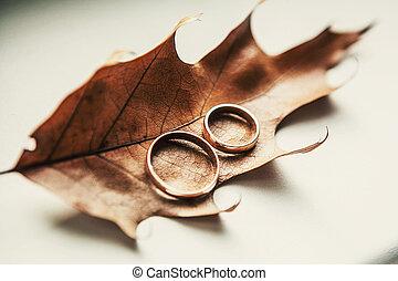 Autumn Wedding - Two wedding-ring on old yellow foilage