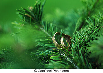 Rings on a tree branch - Wedding rings on a tree branch