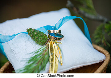 Wedding rings on cushion - Two wedding rings on cushion