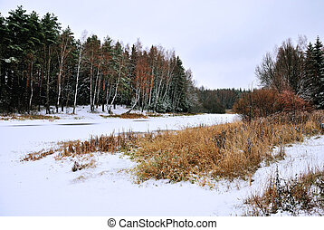Winter landscape, snow mixed forest near the river