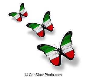 Three North Rhine-Westphalia flag butterflies, isolated on...