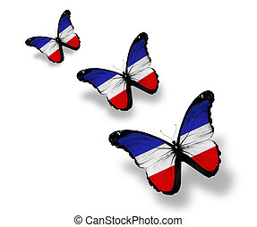 Three Schleswig-Holstein flag butterflies, isolated on white...
