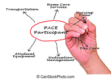 Diagram of PACE