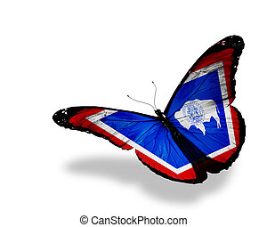 Wyoming flag butterfly