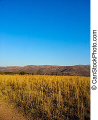 Loskop Nature Reserve - Landscape view of Loskop Nature...