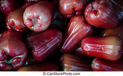Bell Apple or Love Apple - Syzygium samarangense syn Eugenia...