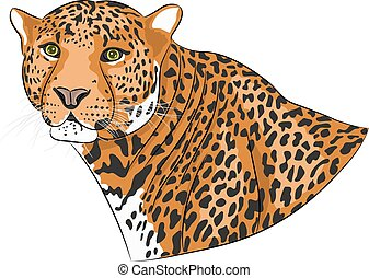 Vector head of a jaguar - Jaguar head with spotty skin...