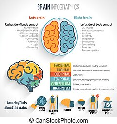 Brain inforgaphics set - Brain structure left analytical and...